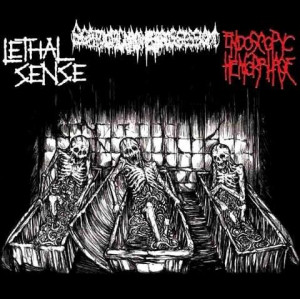 https://www.dyingmusic.com/shop/2101-2422-thickbox/scatologic-madness-possession-lethal-sense-endoscopyc-hemorrhage.jpg