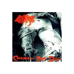 https://www.dyingmusic.com/shop/2409-2864-thickbox/gore-consumed-by-slow-decay.jpg
