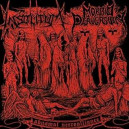 Morbid Perversion / Insolitum - Abysmal Necro Alliance