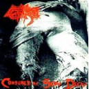 Gore - Consumed by Slow Decay