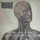 Mangled Torsos - Drawings of the Dead